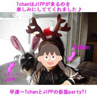 Jipp_1