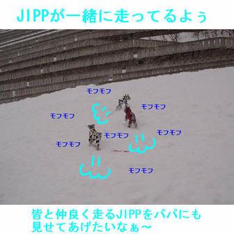 Jipp9