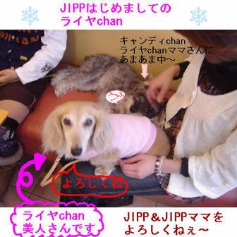 Jipp3_2