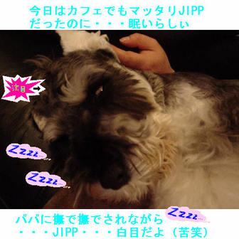 Jipp6_2