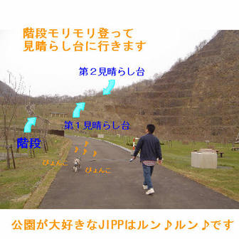Jipp2