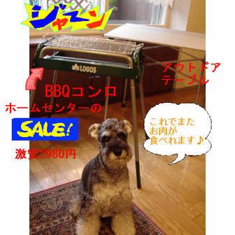 Jipp1_2