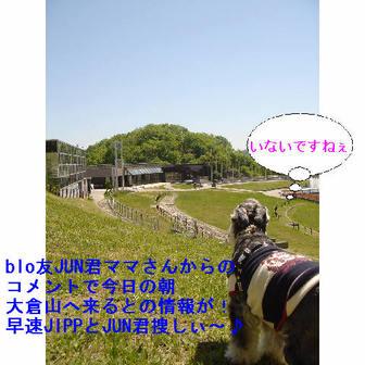 Jipp1