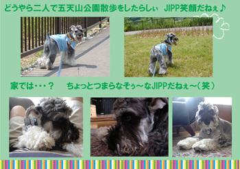 Jipp2_2