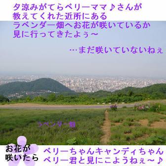 Jipp4_2