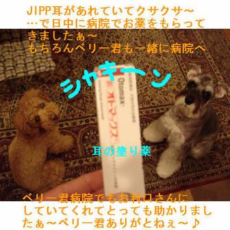 Jipp7